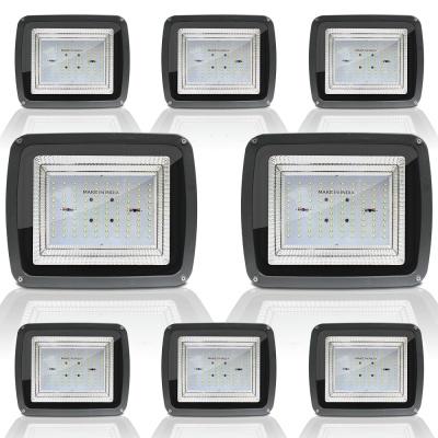 100 Watt Echo Halogan High Focus Hyper Driver LED Flood Light, 6500K (Cool Day Light, 100W, 130 Lumens Per LED)-Pack of 8