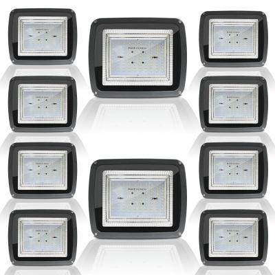 100 Watt Echo Halogan High Focus Hyper Driver LED Flood Light, 6500K (Cool Day Light, 100W, 130 Lumens Per LED)-Pack of 10